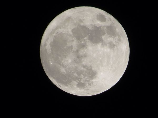 Tonight's Moonshot Moon EyeEm Nature Lover EyeEmbestshots