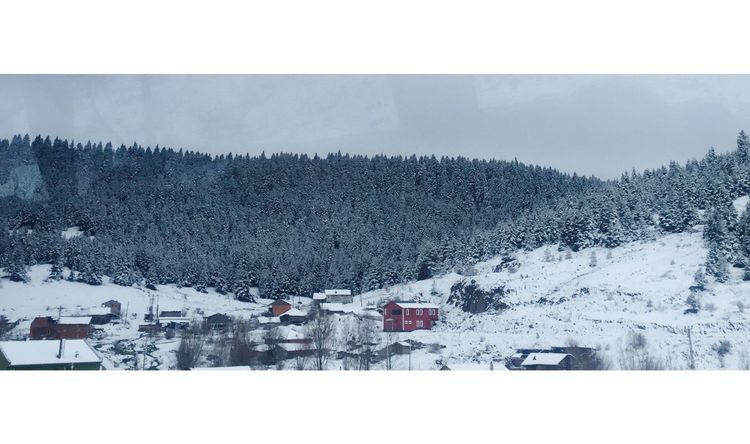 Snow ❄ and Red Home