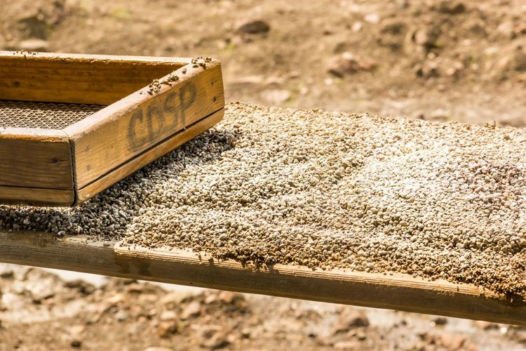 Wood - Material Outdoors Sunlight No People Day Close-up Gravel Dirt Digging For Gold Work Strainer Sieve  Filter