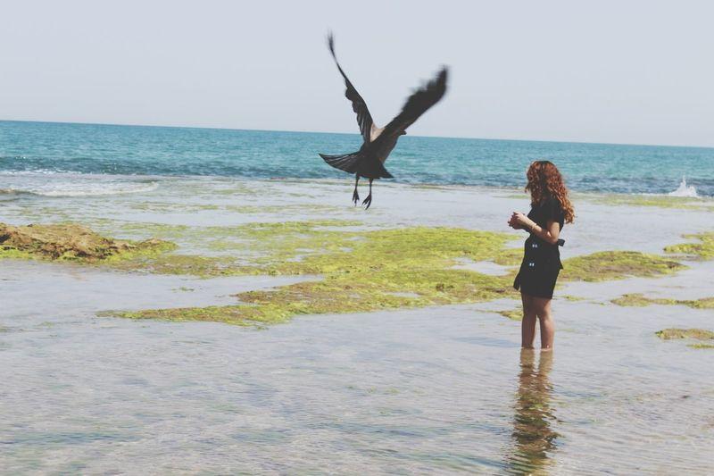 Sea Beauty Girl Israel