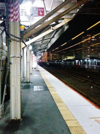 帰ります。🐸👋 Public Transportation Railway Station Go Home