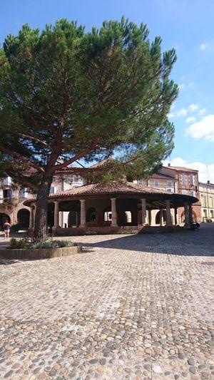 Auvillard Lot Et Garonne