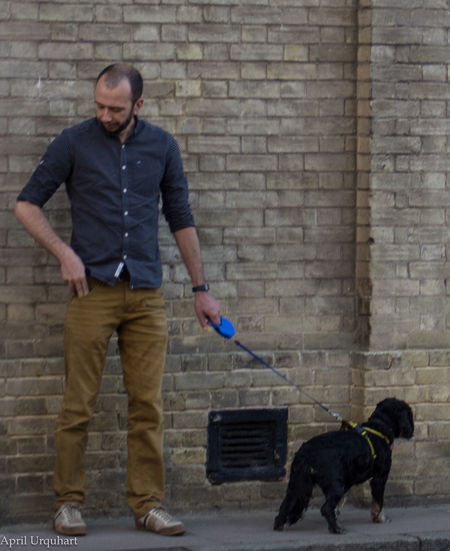 Dog walker Adult Black Dog Brick Wall Dog Dog Walk Dog Walker Dog Walking Dog Walks Domestic Animals Full Length One Animal One Man Only One Person Pets Standing Street Streetphotography