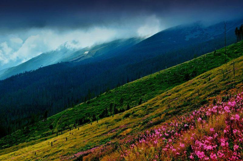 Nature Landscape Landscape_photography Naturelovers Slowakia Vysoke Tatry Landscape_Collection Melancholic Landscapes Landscapes Landscape_lovers