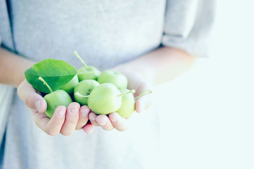 Human Hand Holding One Person Fruit Food And Drink People Healthy Eating Healthy Lifestyle Food Nature Freshness Pastel Apple Green GreenApple