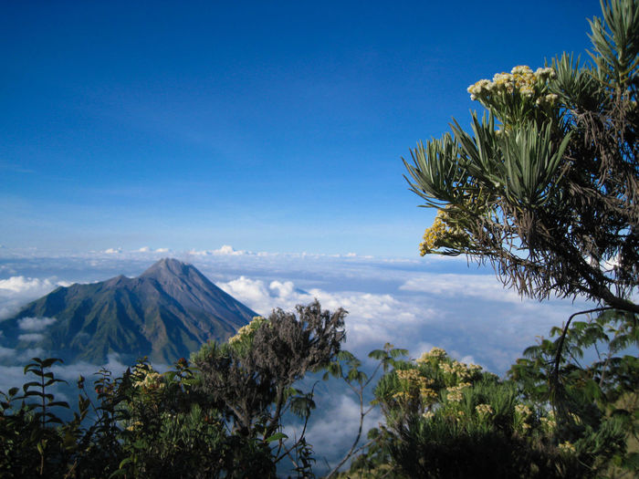 Panoramic view of mount merapi in yogyakarta, indonesia