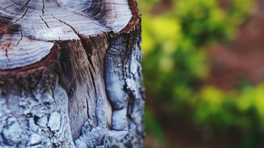 wood....