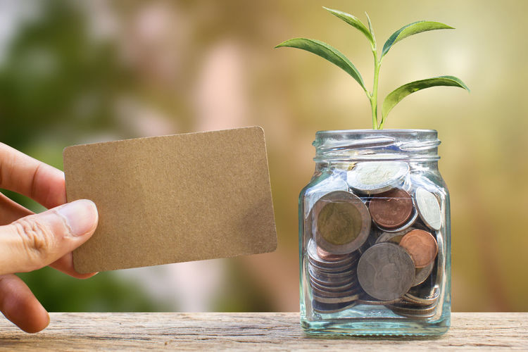Saving and invest money concept. Conceptual hand holding brown card near the glass jar on nature background. Business investment growth concept. Investing and interest concept. Economy Growing Growth Interesting Investing in Quality of Life Loan  Nature Plant Background Bank Cash Coin Concept Earnings Finance Financial Fund Interest Investing Investment Money Save Saving Savings Wealth