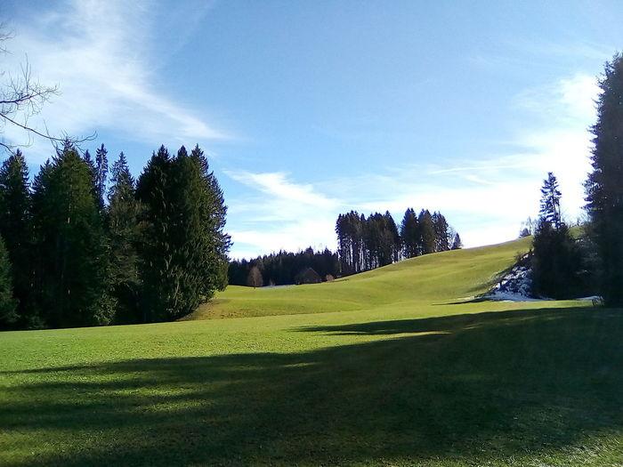 Swiss beauty.
