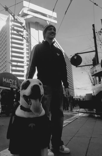 Super Bowl weekend. Superbowl Dogo Argentino Raiders Check This Out