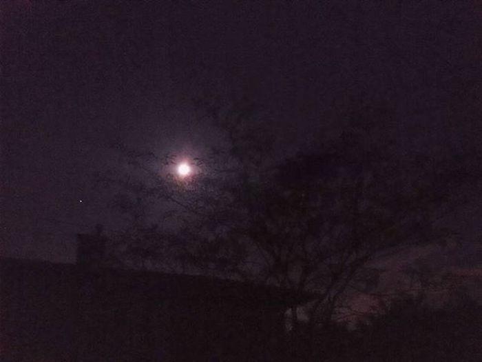 Moon Moontonight Themoon Themoontonight Luna Stelle  Stella Laluna Lalunaquestnotte Notte Lunaincielo Night Tonight Star Stars Lucediluna Chiarofiluna Moonlight Chiarore Lune Clairdelune Lunecesoir Nuit Etoiles
