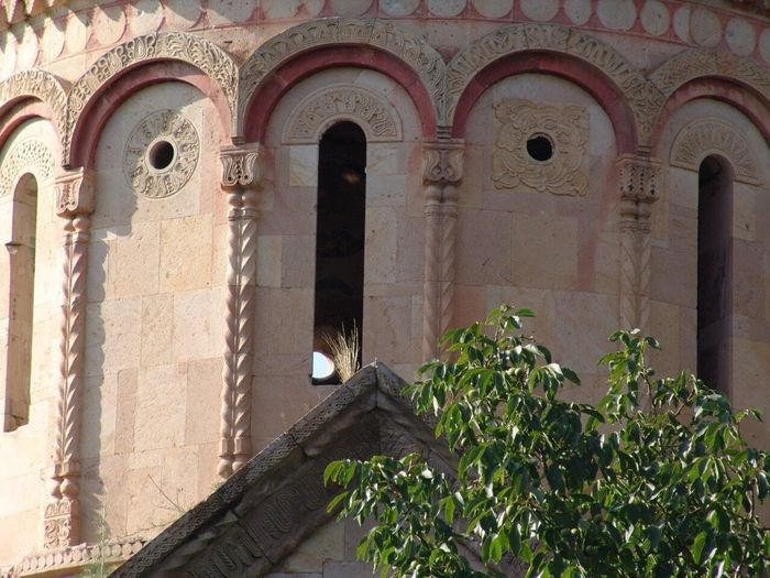 Architektur Church Churches Turkey How Do We Build The World? Helloworld Architecture Building Exterior Built Structure Arch Building The Past Low Angle View History Day No People Religion Old Nature Place Of Worship Wall - Building Feature Belief Plant Architectural Column Outdoors Growth