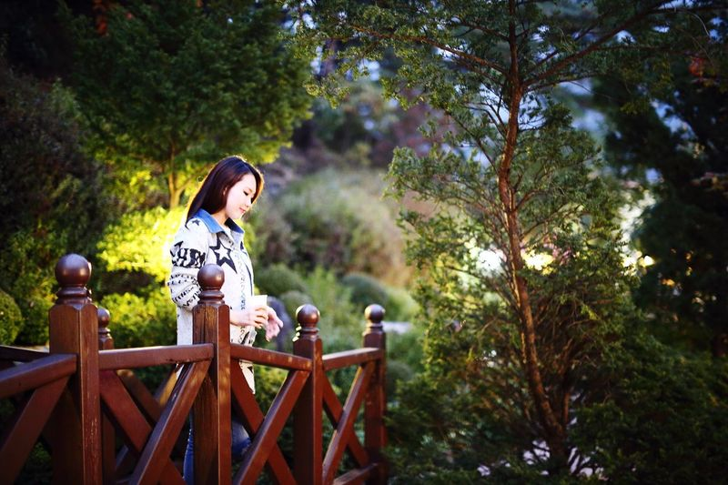 한국의 정원 Landscape Model Coffee Garden Fashion Portrait