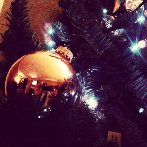 helping out this tree #tree #holidays #celebrate #ornament #lights