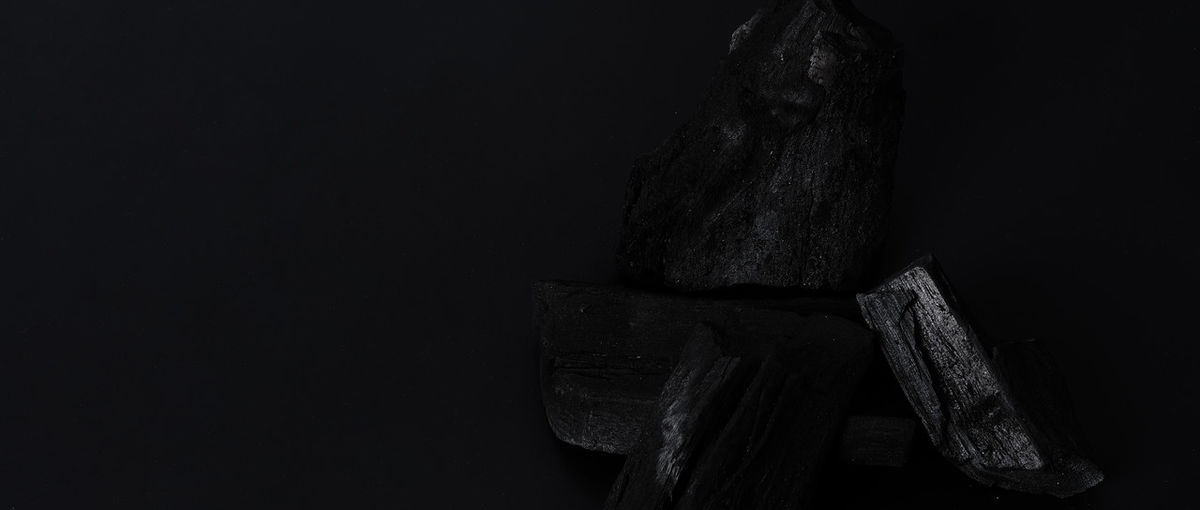 Close-up of log on rock against black background