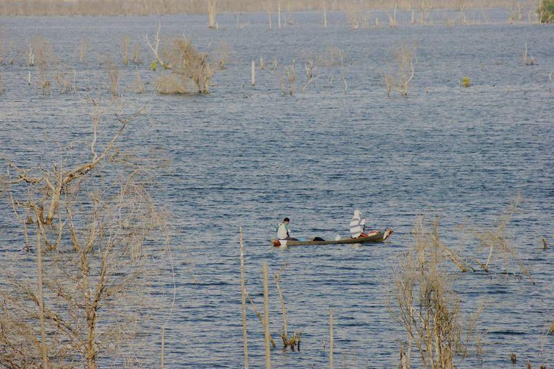 Mancing mania Mancing Mancingmania Mancing Ikan Mancing Mania Fisherman Bird Water Swimming Swan Lake Water Bird Animal Themes