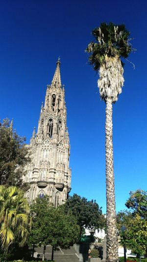 Low angle view of historic church and palm tree against clear blue sky