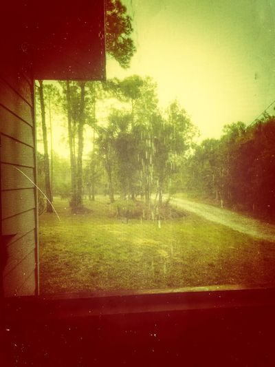 I'm only happy when it rains. The Human Condition