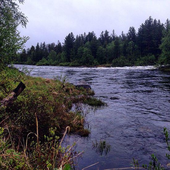 Russia Kolapeninsula River Medvegiya north polar flyfishing salmon