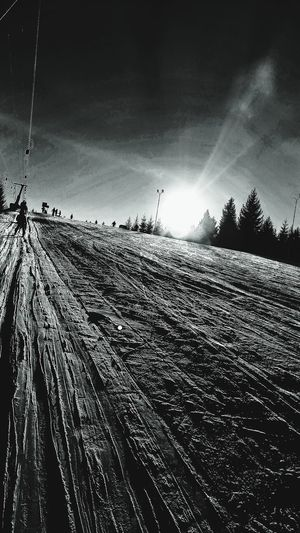 Skiing in black and white...;)Sky Low Angle View No People Outdoors Day Nature Large Group Of Animals Close-up Scenics Snow ❄ Sunlight Sunset Nature Beauty In Nature Snow Clouds And Sky Sunset Silhouettes Mountain Skiing, Taking Photos :) Skiing Resort Skiing 🎿 Skying Cold Temperature Winter Mountain View