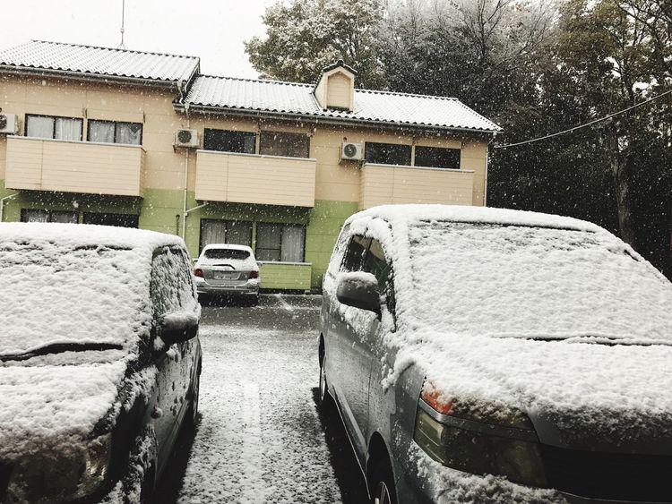 Invierno llegando 3 2 1!! ❄️❄️☃️😍 Cold Temperature Snow Car Transportation Winter Day Invierno2016japan ❄️ Snow