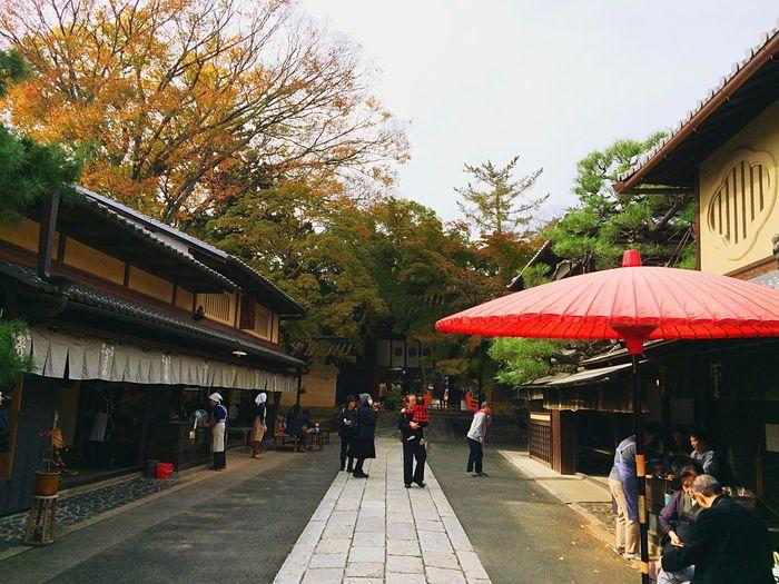 今宮神社 京都Japan 紅葉