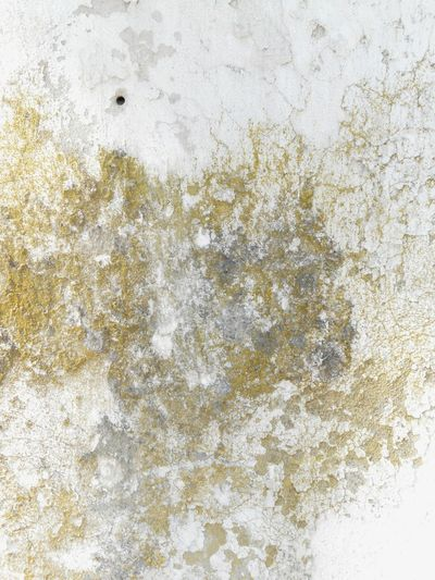 Grungy Textures ArchiTexture Background Textures And Surfaces Mold Mould Concrete Wall Cracked Old Wall Old Buildings