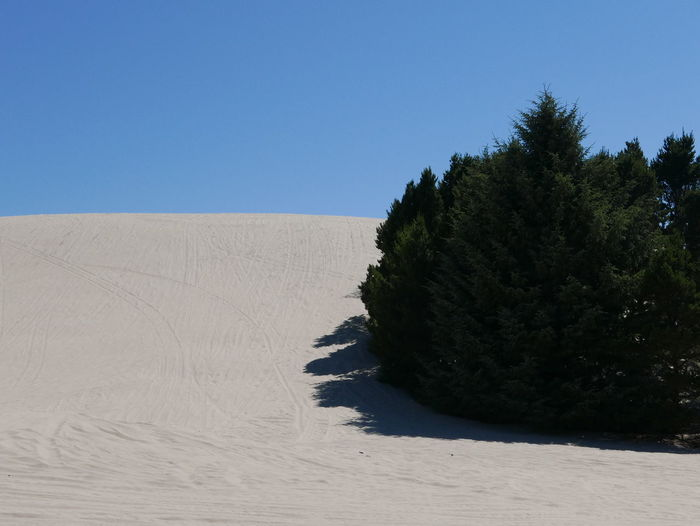 Oregon Dunes Dune Dunescape Landscape Oregonexplored Sand Sand Dune Sky