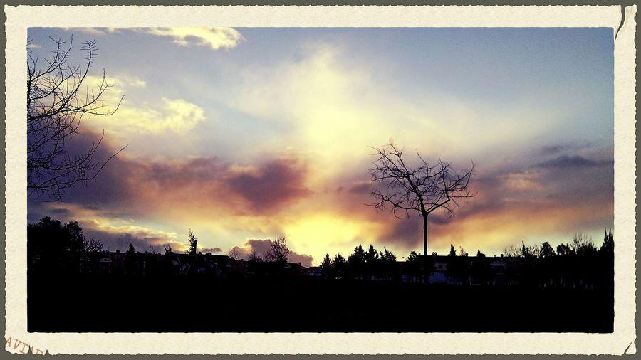 Evening Explosion EyeEmbestshots Urban Landscape Sunset_collection Walking Around