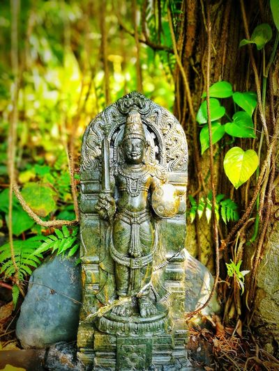 Idol lies in the jungle of the famous butterly sanctuary in ponda, Goa First Eyeem Photo