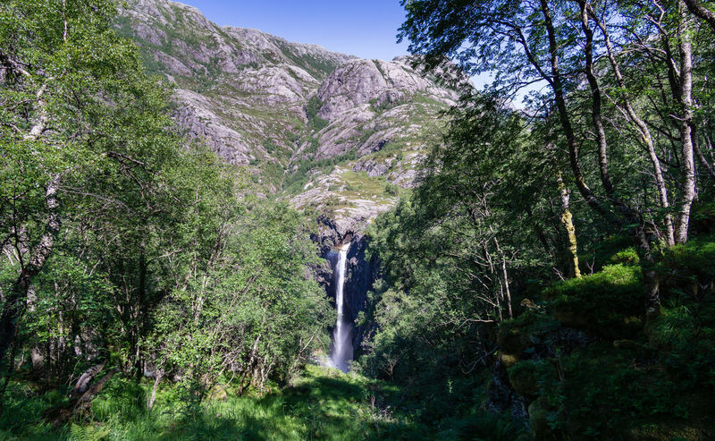Månafossen Norway Beauty In Nature Day Environment Flowing Flowing Water Forest Growth Land Long Exposure Lush Foliage Mountain Nature No People Non-urban Scene Outdoors Plant Scenics - Nature Tranquil Scene Tranquility Tree Waterfall
