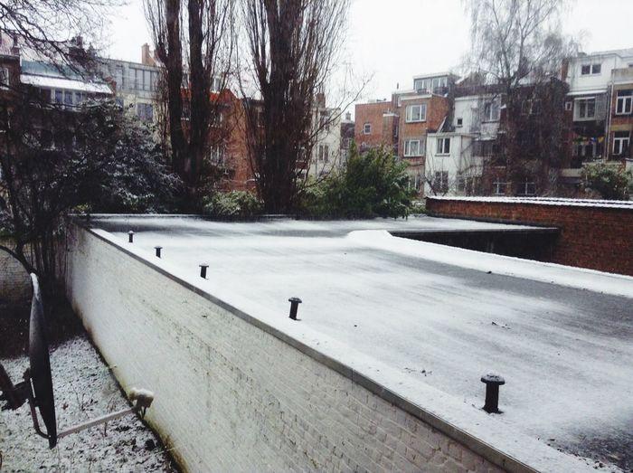 Il neige