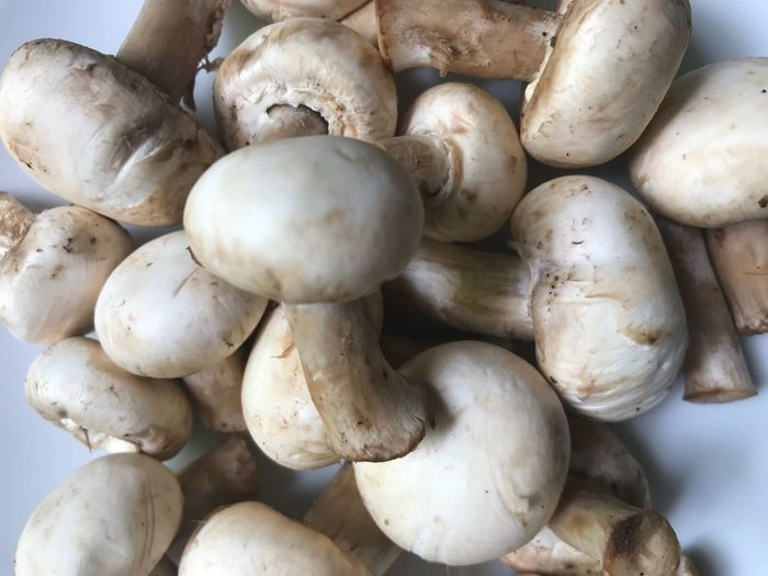 Mushroom Food Vegetable Food And Drink Freshness Wellbeing Healthy Eating Raw Food No People Still Life Large Group Of Objects Mushroom Close-up High Angle View White Color Edible Mushroom Day Fungus Organic Abundance Market
