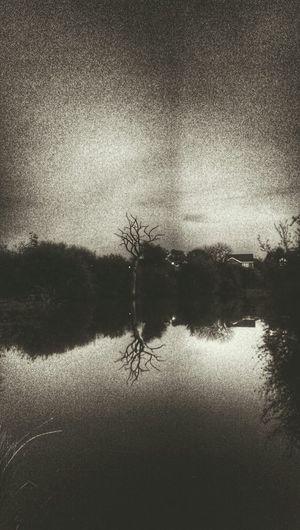 Water Reflections Dark Edit Darkness Tree_collection  Reflection_collection Reflections Pond Urban Nature