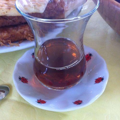 Mihrabat Mihrabad Koru Istanbul kahvalti cay tea