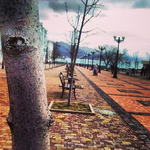 "Sunday walk. ""Live Butterflies"" park. Rostov Noon"
