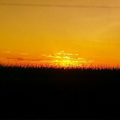 Colorado sunset,orange sky, corn field,farm land,