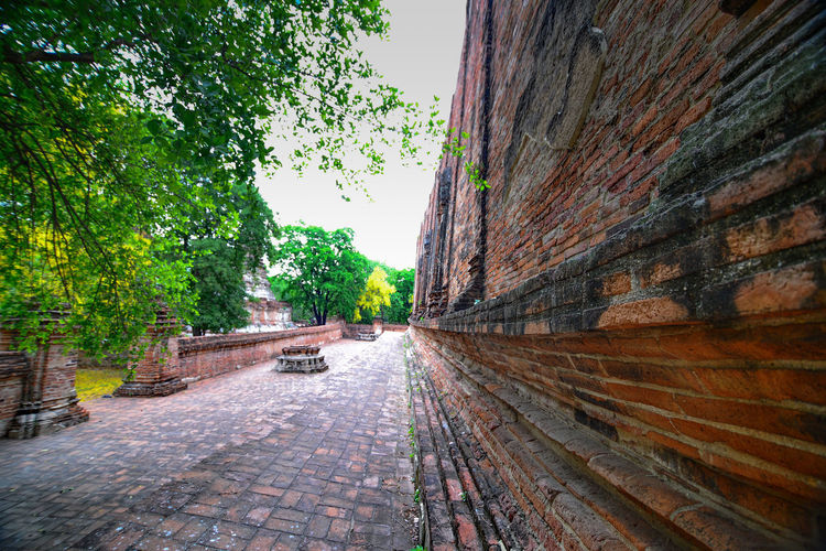 Visit at Ayutthaya old temple Tree Plant Nature Architecture Sky Day Built Structure No People Growth Outdoors Direction The Way Forward Building Exterior Clear Sky Wall Footpath Transportation Travel City Building Old Temple In Thailand. Nice Temple Beautiful Old Town Rerigion