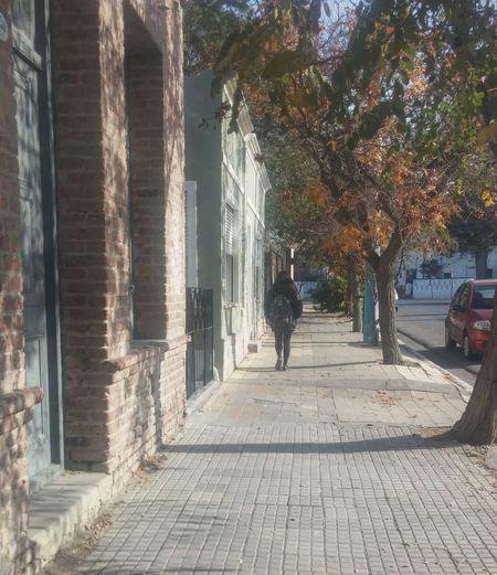 Photooftheday Street Autumn Trelew