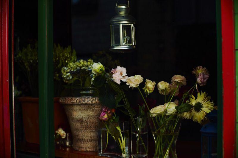 Close-up of vase against black background