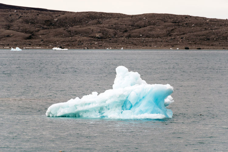 Iceberg in Nordenskjöld Glacier, Svalbard Elg Global Warming Ice Isolated Longyearbyen Moose Norway Raindeer Abandoned Arctic Day Glacier Global Seed Vault Mining No People North Outdoors Svalbard