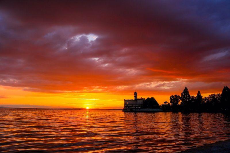 Water Sunset Lake Lakeofconstance Sun Orange Color Horizon Over Water Dramatic Sky Cloud - Sky Castle Montfort Schloss Schlossmontfort Langenargen Germany Deutschland