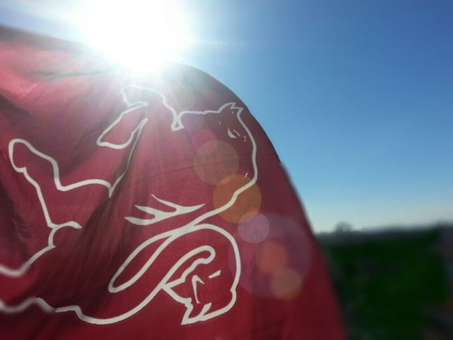 Flag Football Torino Granata FVCG