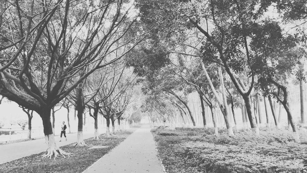 在路上 Blackandwhite 萬有影力 TYTVISION Black & White Taking Photos Streetphoto_bw