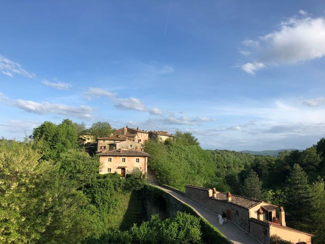 Borgo Antico Ferragamo Il Borro Architecture Built Structure Tree Building Exterior Cloud - Sky Sky Plant Day House Building Nature Green Color Sunlight Old Residential District Outdoors Growth City No People History