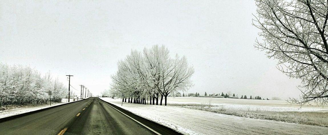 On The Road Snowminimals Hoarfrost