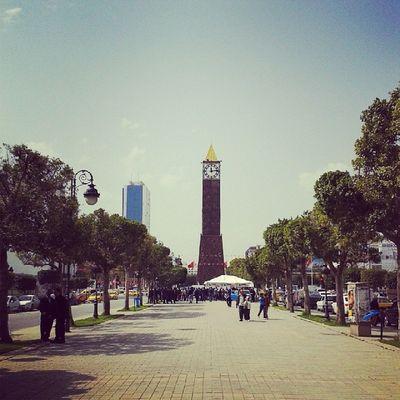 Idreamoftunisia InstagramTunisie Instagramtn Avenue Habib Bourguiba sunnyday awesome view