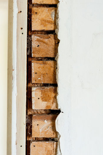 Close up of wood lath and horsehair plaster in old home Home Renovations Architecture Backgrounds Built Structure Close Up Close-up Detail Full Frame Horsehair Plaster House Indoors  Lath And Plaster Macro No People Old House Plaster Textured  Wood Lath