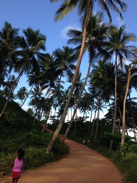 Lindo lugar Praia das Conchas... Relaxing
