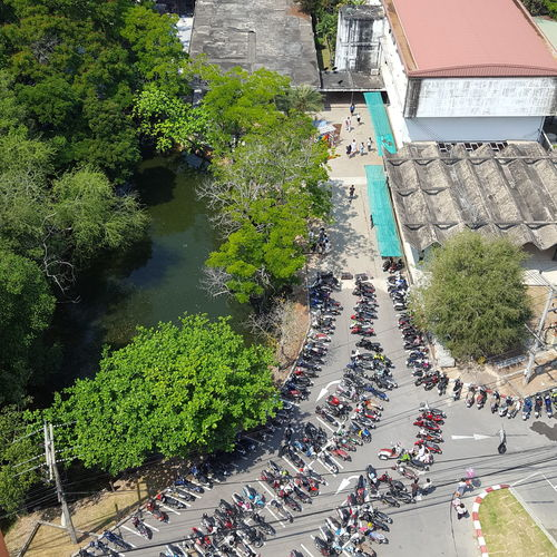 High angle view of crowd on road by trees